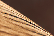 Diagonal sand pattern in the Sahara desert of Morocco.