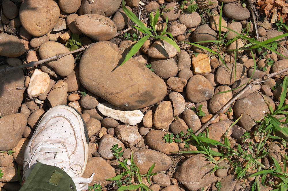 big 'galet' stones vineyard chateau de nages rhone france