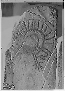 """9305-B3499-6. """"Winquatt Museum, The Dalles. April 2, 1974."""" Indian rock art (petroglyphs) removed from the Celilo - Wishram area before being submerged under the backwater of the The Dalles Dam in 1957. These were photographed in 1974 while at the Winquatt Museum in The Dalles. The rock art is now located on Temani Pesh-wa Trail in Columbia Hills State Park (formerly Horsethief Lake State Park), on the Washington side of the Columbia River Gorge near The Dalles."""