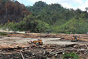 Logging carries on unabated 24hrs a day. Heavy trucks removing their huge cargos of logs from the rainforest. Home of the Kenyah native people who once lived in Long Geng, which was flooded by the Bakun Dam. Their community is now dispersed between Sungai Asap, Long Lewan and floating longhouses on the Bakun reservoir. Bakun Belaga region, Sarawak Borneo 2012<br /><br />Borneo native peoples and their rainforest habitat revisited two decades later: 1989/1991-2012. <br /><br />The Bakun hydro-electric dam, which covers 700km². Construction of the dam required the relocation of more than 9,000 native residents, mainly Kayan and Kenyah indigenous peoples who lived in the flooded area. Many Sarawak natives have been relocated to a longhouse settlement named Sungai Asap in Bakun. Most of them were subsistence farmers. Each family were promised only 3 acres of land, insufficient to survive, and many families still have not been compensated for the loss of their longhouses<br /> <br /> Sarawak's primary rainforests have been systematically logged over decades, threatening the sustainable lifestyle of its indigenous peoples who relied on nomadic hunter-gathering and rotational slash & burn cultivation of small areas of forest to survive. Now only a few areas of pristine rainforest remain; for the Dayaks and Penan this spells disaster, a rapidly disappearing way of life, forced re-settlement, many becoming wage-slaves. Large and medium size tree trunks have been sawn down and dragged out by bulldozers, leaving destruction in their midst, and for the most part a primary rainforest ecosystem beyond repair. Nowadays palm oil plantations and hydro-electric dam projects cover hundreds of thousands of hectares of what was the world's oldest rainforest ecosystem which had some of the highest rates of flora and fauna endemism, species found there and nowhere else on Earth, and this deforestation has done irreparable ecological damage to that region
