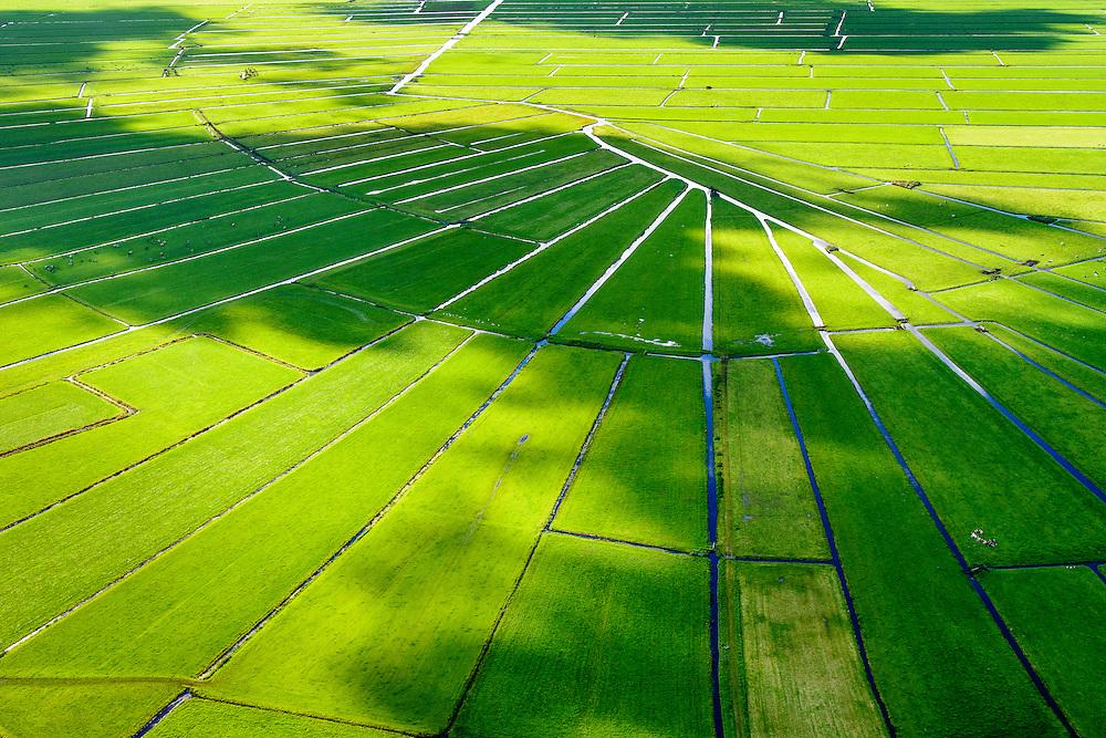 Nederland, Noord-Holland, Gemeente Ouder-Amstel, 27-09-2015; Amstelland, Polder de Rondehoep (Polder de Ronde Hoep), een van de grootste onbebouwde weidegebieden van de Randstad met karakteristiek stervormig kavelpatroon. Dit slotenpatroon van gerende verkaveling is ontstaan ten tijde van de ontginning in de middeleeuwen. <br /> The Polder Rondehoep (or Polder Round Hoep), one of the largest undeveloped pasture area's in the Randstad with characteristic star-shaped pattern. This pattern is the result of the extraction during the Middle Ages.<br /> luchtfoto (toeslag), aerial photo (additional fee required).foto/photo Siebe Swart