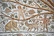 Detail of a Roman mosaics design depicting Silenus and Cupids showing Pan and a goat and a cupid in the vines, from the House of Sienus, ancient Roman city of Thysdrus. 3rd century AD. El Djem Archaeological Museum, El Djem, Tunisia. .<br /> <br /> If you prefer to buy from our ALAMY PHOTO LIBRARY Collection visit : https://www.alamy.com/portfolio/paul-williams-funkystock/roman-mosaic.html . Type - El Djem - into the LOWER SEARCH WITHIN GALLERY box. Refine search by adding background colour, place, museum etc<br /> <br /> Visit our ROMAN MOSAIC PHOTO COLLECTIONS for more photos to download as wall art prints https://funkystock.photoshelter.com/gallery-collection/Roman-Mosaics-Art-Pictures-Images/C0000LcfNel7FpLI