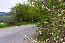 A lay-by leads to a dogging spot - a place where people meet to have sex with strangers, just off the A26 at Eridge near Tonbridge Wells in Kent. PLACE, March 27 2019.