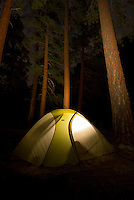 A tent glows in the forest along the Middle Fork of the Salmon River.  Frank Church-River of No Return Wilderness, Idaho.