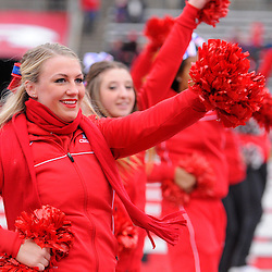 10 November 2012: Rutgers cheerleaders perform during NCAA college football action between the Rutgers Scarlet Knights and Army Black Knights at High Point Solutions Stadium in Piscataway, N.J..