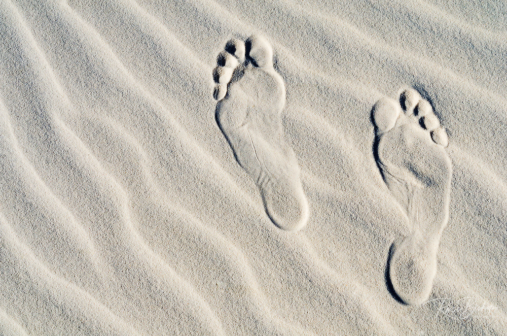 Footprints on dune patterns, White Sands National Park, New Mexico USA