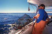 Lobster fisherman hauls out his traps along the mid-coast of Maine.