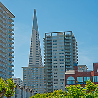 The Trans-America Building towers behind apartment buildings in downtown San Francisco, California, as seen from the Embarcadero.