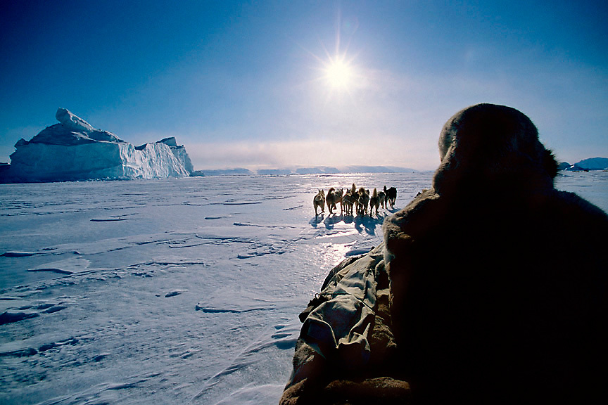 "Polar Inuit Hunters-Dogsledding frozen Baffin Bay, Greenland<br /> Polar Inuit hunter Angit Umaq lives in Qaanaaq, Greenland the world's most northern community.<br /> Umaq travels by dogsled along Greenland's western coastline in winter looking for seals, walrus and polar bears to hunt for food and clothing. The dogsled trip will take nearly a month. He will visit a few scattered relatives in tiny villages along the coast during his journey.<br /> <br /> Story Summary;<br /> The Polar Inuit hunters leave Qaanaaq, the world's most northern community with their dog teams heading south along the western coast of Greenland.""A hunter without dogs can be considered a half hunter,"" goes a Greenland folk saying. The relationship between Greenlandic sled dogs and the hunters is an inseperable bond.  To survive the harsh and unpredictable conditions of the high arctic, the early Inuit had to get by on what they could kill. Having dogs often meant the difference survival and starvation. In leans times dogs were eaten. The dogs are not pets.They are working class animals. If a dog does meet the standards of his hunter/master he is cut loose from the gang line to test its resolve on the sea ice. The Inuit continue to hunt in the ways of their ancestors. By law they are allowed to hunt polar bear if done so by traditional means. This story was created while spending two weeks with a group of Inuit hunters and their dogs on frozen Baffin Bay documenting life on the ice."