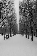 France. Pariis, 1st district ,  Royal palace Garden,   / Jardin du palais royal