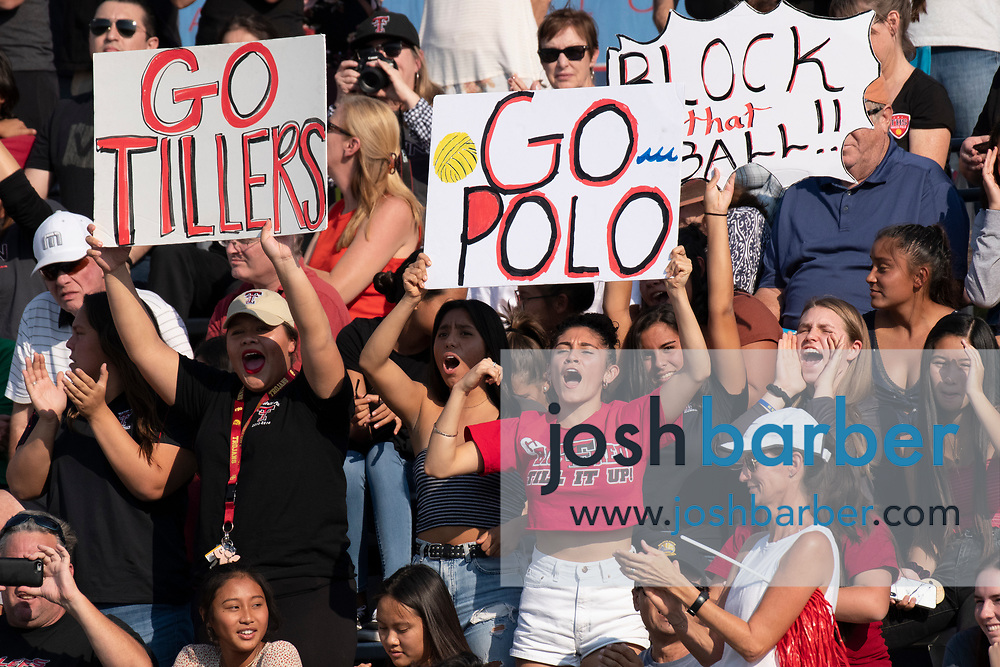 Tustin fans cheer during the CIF-SS Division 6 Final against Valley View during the CIFS-SS Division 6 Championship Final at William Woollett Jr. Aquatic Center on Saturday, November 10, 2018 in Irvine, Calif. Valley View won 10-9. (Photo by Josh Barber, Contributing Photographer)