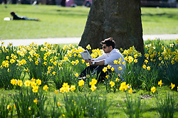 © Licensed to London News Pictures. 16/03/2014. London, UK. People enjoying the warm weather in St James' Park. Photo credit : David Tett/LNP