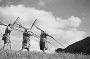 Farmhands with Rakes, Molln, Austria, 1935