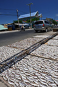 Racks of fish drying in the sun by the side of the road. Ben Da fishing village, Vung Tau, Vietnam