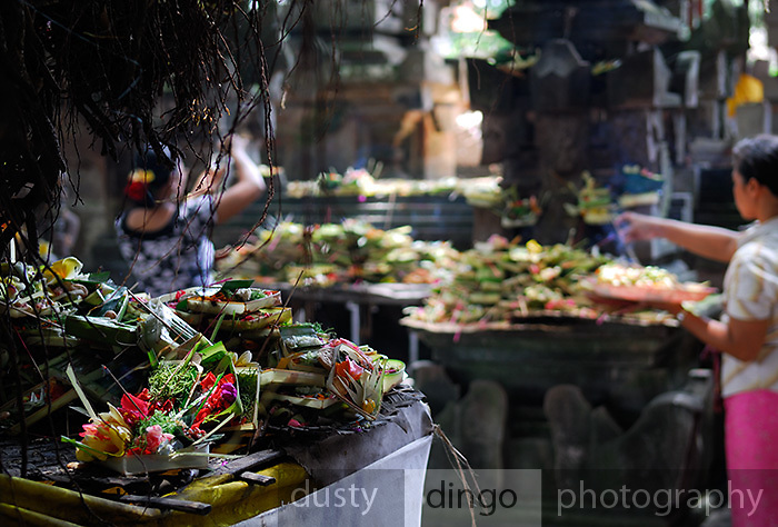 Temple offerings at village temple in Ubud, Bali.