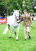 Joe Burke and Banks Timber the visitor Champion owned by Seamus Hynds from Westmeath. Picture:Andrew Downes