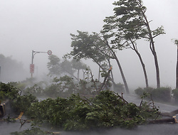 PINGTUNG, Sept. 14, 2016 (Xinhua) -- Trees are broken by strong wind on a highway from Pingtung to Kenting in typhoon-hit Taiwan, southeast China, Sept. 14, 2016. Typhoon Meranti on Wednesday brought strong winds and heavy downpour to the island. (Xinhua) (ry) (Credit Image: © Johnson Liu/Xinhua via ZUMA Wire)