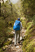 Rear view of a backpacker hiking along the Routeburn Track, South Island, New Zealand