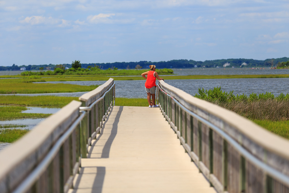 Berlin, MD - July 10, 2016: A walkway in the Assateague Island National Seashore in Maryland.