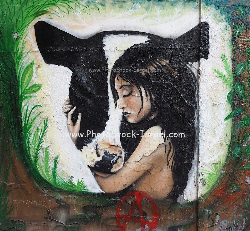 Love thy bull. Anti bullfighting graffiti in Madrid Spain woman hugs a calf