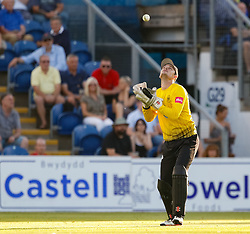 Gloucestershire's Gareth Roderick takes the catch for the wicket of Glamorgan's Andrew Salter<br /> <br /> Photographer Simon King/Replay Images<br /> <br /> Vitality Blast T20 - Round 8 - Glamorgan v Gloucestershire - Friday 3rd August 2018 - Sophia Gardens - Cardiff<br /> <br /> World Copyright © Replay Images . All rights reserved. info@replayimages.co.uk - http://replayimages.co.uk