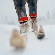 Sami reindeer herder on skis, dressed in Gakti, traditional dress, Lapland, Sweden
