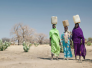 Women of the Nuba tribe carry water in plastic containers on their heads in Nyaro village, Kordofan region, Sudan