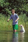 Teenage Boy Training Labrador Retriever