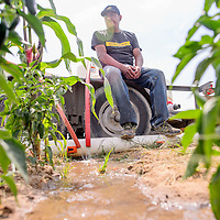 082515       Cable Hoover<br /> <br /> Huron Etsitty rests on the edge of a trailer as water flows from tanks that uses to haul water to his family farm near Shiprock Tuesday.