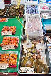 various fresh sea food for sale at wholesale shop, Tsukiji Fish Market or Tokyo Metropolitan Central Wholesale Market, the world's largest fish market, hadling over 2,500 tons and over 400 different kind of fresh sea food per day