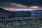 rural hilly landscape with vineyard view at dawn France Languedoc Aude Razes