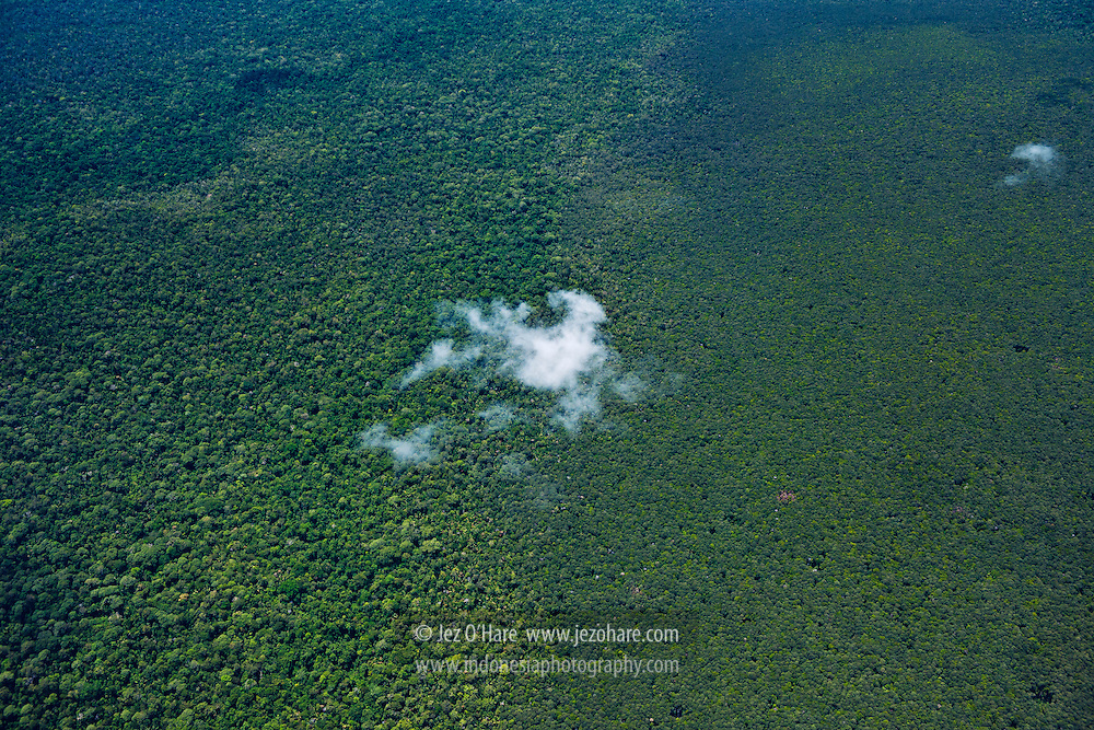 Lorentz National Park, Papua, Indonesia.