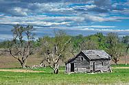 An abandon barn on the Kansas prairie.
