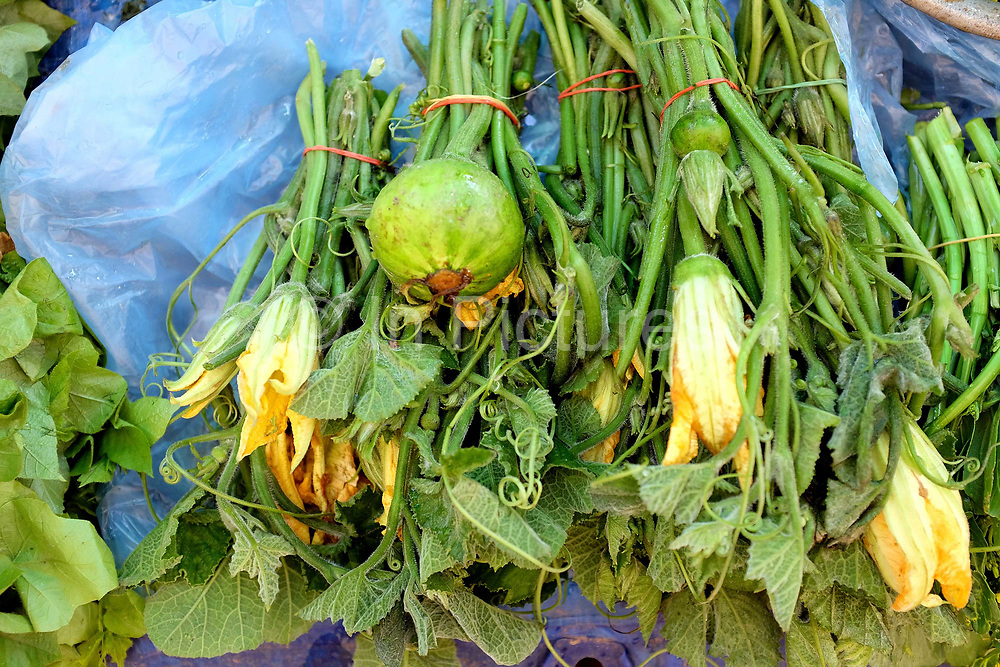 Pumpkin flowers for sale at Hua Kua market on the outskirts of Vientiane city, Lao PDR. A large variety of local products are available for sale in fresh markets all over Laos, all being sold on small individual stalls.