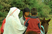 Bedouin Family and donkey