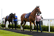 Port Winston ridden by Daniel Muscutt and trained by Milton Bradley - Mandatory by-line: Robbie Stephenson/JMP - 18/07/2020 - HORSE RACING- Bath Racecourse - Bath, England - Bath Races 18/07/20