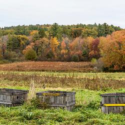 Fall at Kinney HIll Farm in South Hampton, New Hampshire.