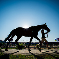Eventing - First Horse Inspection - Rio 2016 Olympic Games
