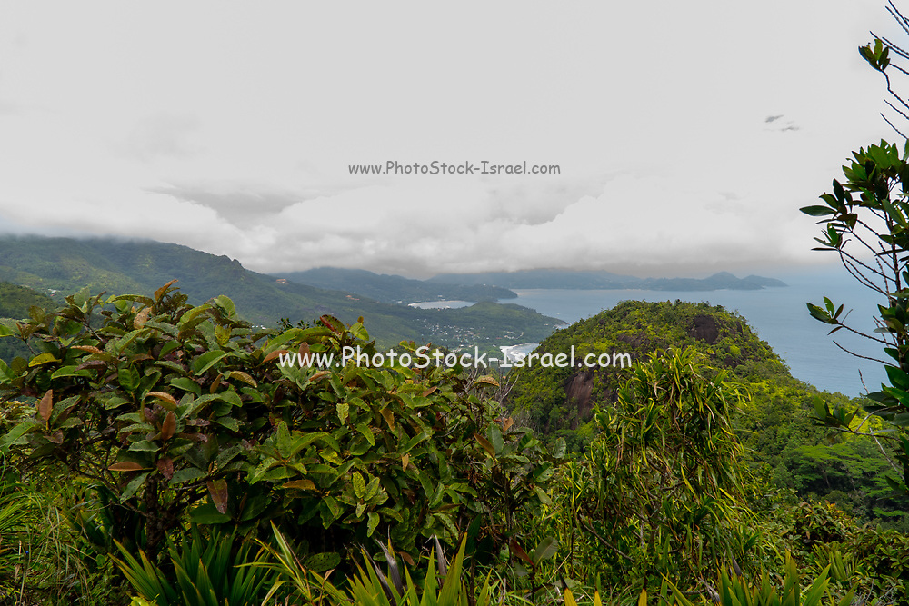 Mahé is the largest island of Seychelles, lying in the northeast of the nation in the Indian Ocean.