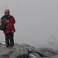 A tourist from a cruise ship explores Booth  Island, Antarctica during a heavy snowstorm.