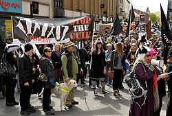 © Licensed to London News Pictures. 19/04/2014; Gloucester, UK.  Around 500 protesters marched from Gloucester Park through Gloucester city centre protesting against the badger cull, which is due to resume in parts of Gloucestershire and West Somerset this summer, despite an official report into last year's cull which summarised failings over target numbers killed and the humaneness of the method of culling.<br /> Photo credit: Simon Chapman/LNP