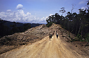 LOGGING ROAD, MALAYSIA. Kenyah walking to logging blockade. Sarawak, Borneo 1991 <br /> <br /> Tropical rainforest and one of the world's richest, oldest eco-systems, flora and fauna, under threat from development, logging and deforestation. Home to indigenous Dayak native tribal peoples, farming by slash and burn cultivation, fishing and hunting wild boar. Home to the Penan, traditional nomadic hunter-gatherers, of whom only one thousand survive, eating roots, and hunting wild animals with blowpipes. Animists, Christians, they still practice traditional medicine from herbs and plants. Native people have mounted protests and blockades against logging concessions, many have been arrested and imprisoned.