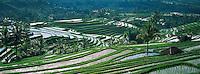 Indonesie, Bali, Rizieres dans le centre de l'ile // Indonesia, Bali, Rice field, Centre island