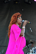 August 22, 2015- Brooklyn, NY-United States:  Recording Artist Kelis performs at the 2015 AFROPUNK Festival on August 22, 2015 held at Commodore Barry Park in Brooklyn, New York City.  AFROPUNK is an influential community of young, gifted people of all backgrounds who speak through music, art, film, comedy, fashion and more. Originating with the 2003 documentary that highlighted a Black presence in the American punk scene, it is a platform for the alternative and experimental.(Terrence Jennings/terrencejennings.com)