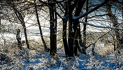 Sun and snow make for a pretty winter picture<br /> <br /> (c) Andrew Wilson | Edinburgh Elite media