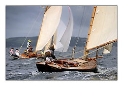 The final day of racing of the Fife Regatta on the King's Course North of Great Cumbrae<br /> <br /> Tringa, G&H Scharbaum, GER, Gaff Sloop, Wm Fife 3rd, 2010<br /> * The William Fife designed Yachts return to the birthplace of these historic yachts, the Scotland's pre-eminent yacht designer and builder for the 4th Fife Regatta on the Clyde 28th June–5th July 2013<br /> <br /> More information is available on the website: www.fiferegatta.com