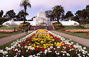 Golden Gate Park Conservatory. San Francisco, California.