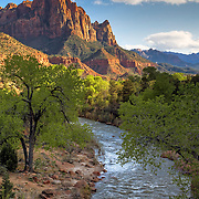 Sunset approaches on the Watchman and the Virgin River in Zion National Park, UT. Designated in 1919, Zion is Utah's oldest national park.