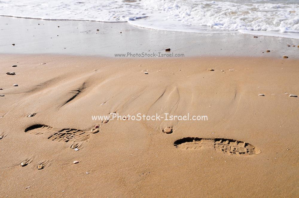 Footprints on the seashore