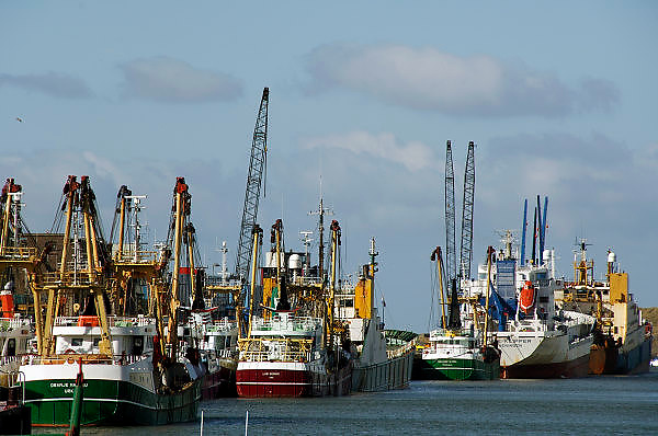 Nederland, IJmuiden, 26-2-2006..Vissersschepen, vissersboten liggen werkloos in de haven van IJmuiden. Visserij, vangstquotum, vangstqouta. Zeevisserij, vangstbeperking, visquotum, bedreigde bedrijfstak, milieu, visstand, leegvissen oceanen...Foto: Flip Franssen/Hollandse Hoogte